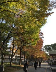 Une université à Osaka